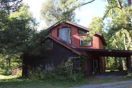 Comfortable Woodstock Getaway - Ház