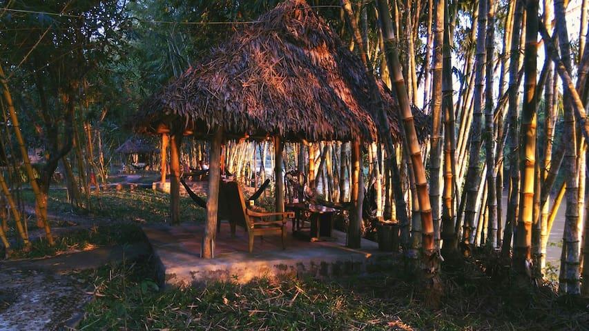 Green Hope Lodge Cat Tien park