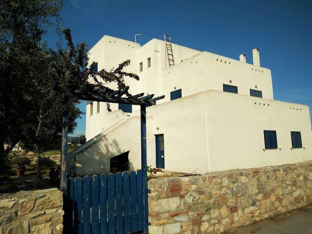 Sunny, spacious garden beach house - Chalcis - Haus