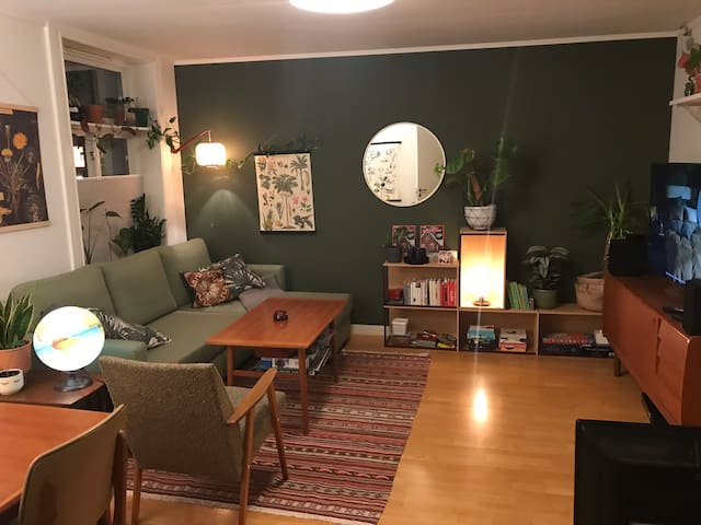 Cosy and central apartment