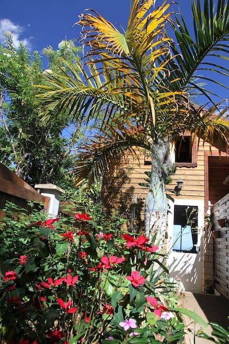 L'entrée du chalet et son petit jardin créole