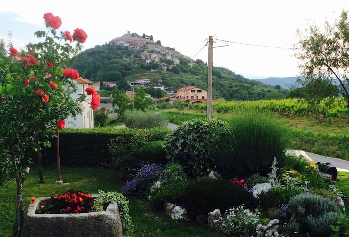 "Lovely apartment ""Tomaz"" with amazing view - Motovun - Apartemen"