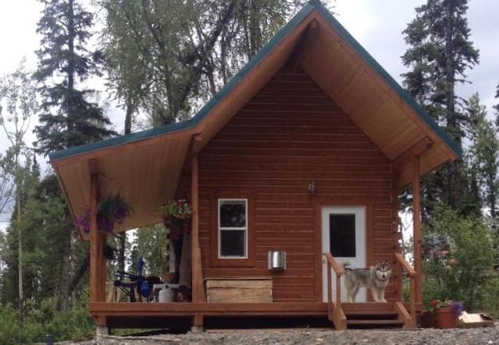 Luxury Alaskan Cabin with view, near fishing!
