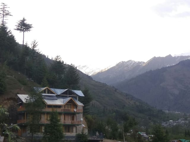 3 BHK well furnishd at great and peaceful location - Manali - Apartment