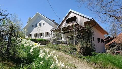 Historic Pocket House at Lenart near Ljubljana