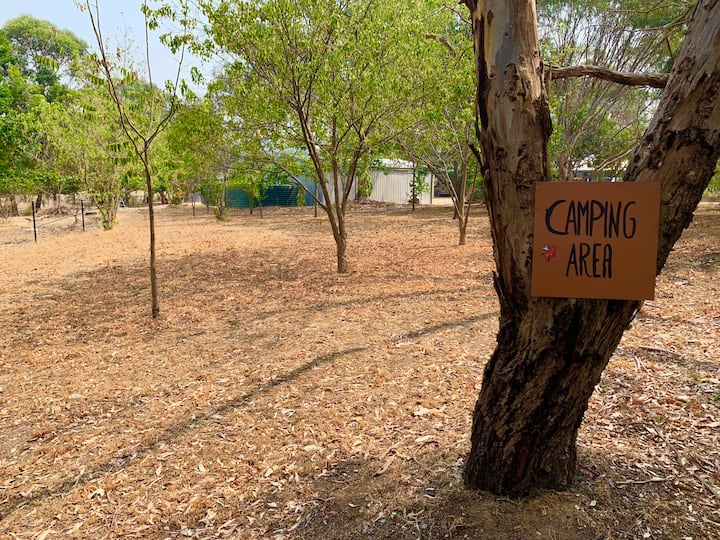 Camping at Free Spirits Vegan Farm Sanctuary