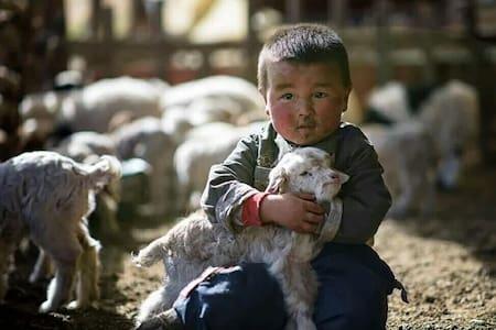 Adventure Tour to the Gobi! - Ulaanbaatar