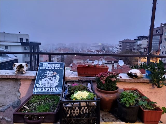 Magical Flying Terrace Garden in Center of Ankara
