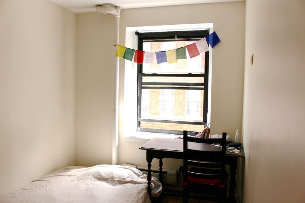 South-facing window.
