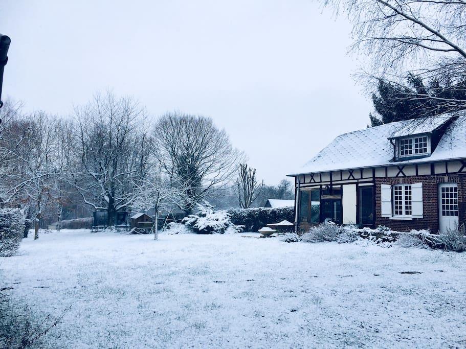 Sous la neige en hiver....