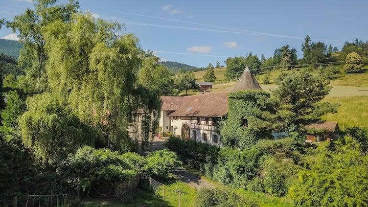 Gite du Taennchel-Domaine d'Estary- Lièpvre