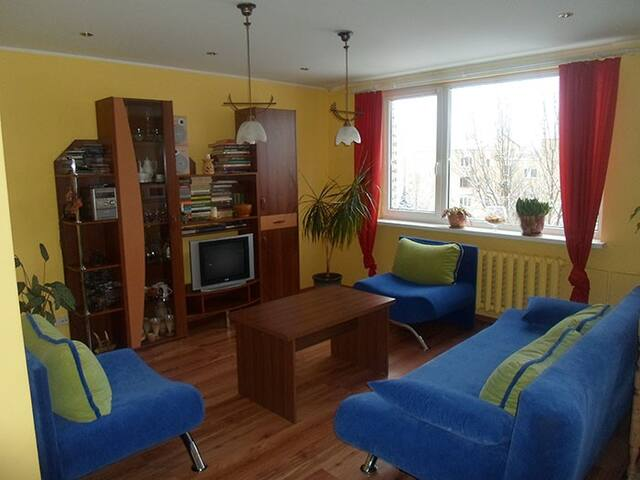 Comfort place in Druskininkai