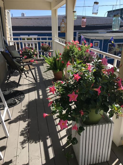 In season, there is always an explosion of flowers on the deck.