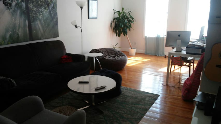 Crown Heights 1-Bedroom Near Parks and Museum