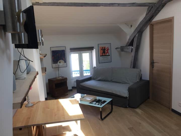 Loft de charme de45 m2
