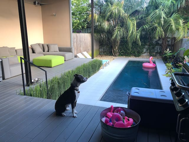 It's hot in New Orleans - bring a swimsuit.  PS - That's Peanut, she'll be around to say hi on your trip, but out of your way if dogs aren't your thing.