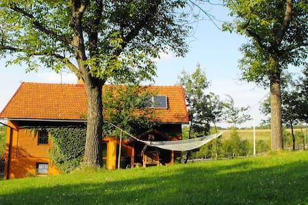 AGROTURYSTYKA ZACISZE -  CZARNA OWCA - Brzeżanka - Apartment