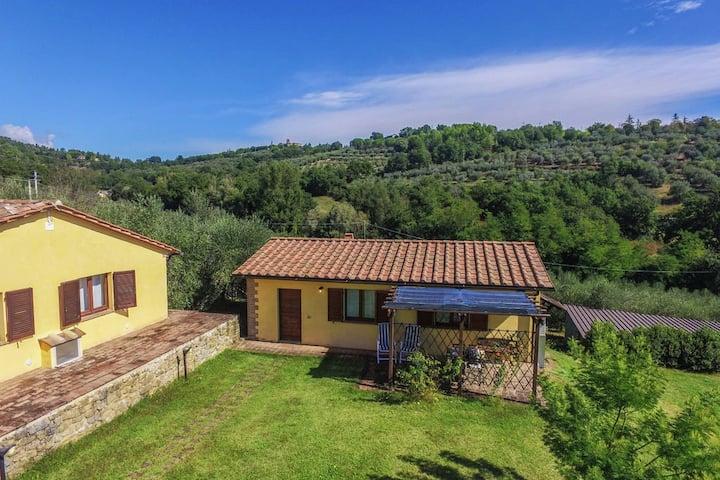 Mimosa, bellissima abitazione tra gli olivi umbri