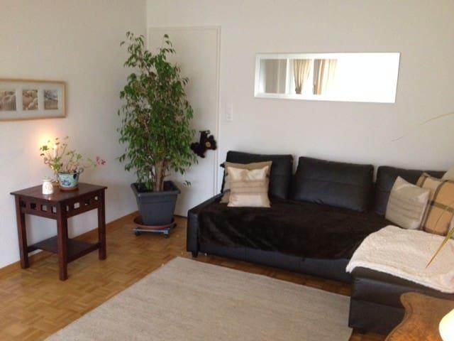 Furnished Apartment - Zürich - Appartement