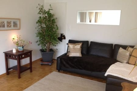 Furnished Apartment mx:3 weeks/ 1-31 December 2016 - Zürich