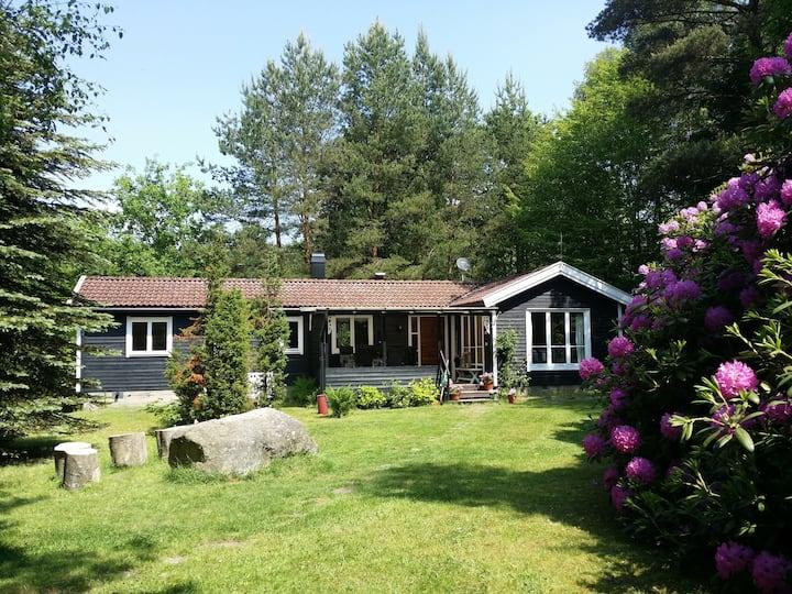 Charming cabin by Skyrup Golfklub