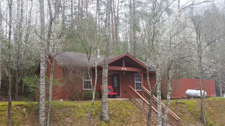 Beary Cuddly Cabin minutes from Gatlinburg, GSMNP