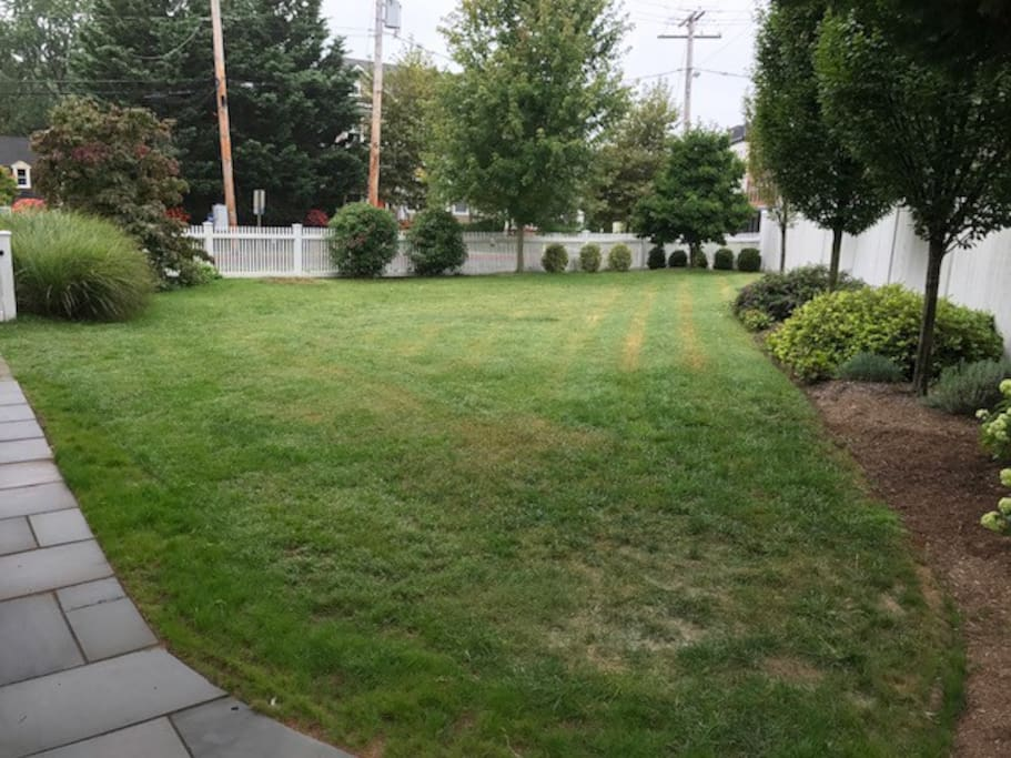 Huge Yard, especially for downtown