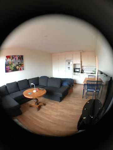 Clean apartment near the center. - Hässleholm - Appartement