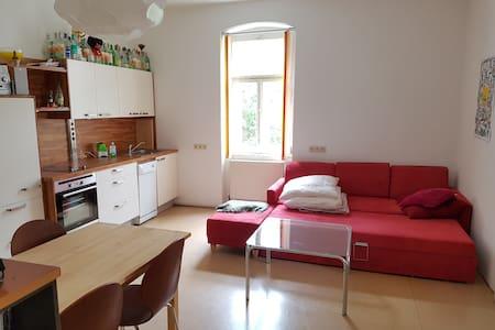 Gemütliche Wohnung im Herzen des Salzkammerguts - Ebensee - Lakás