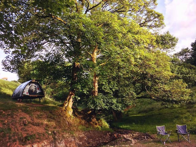 New for 2018!! Landpod,please see other listings