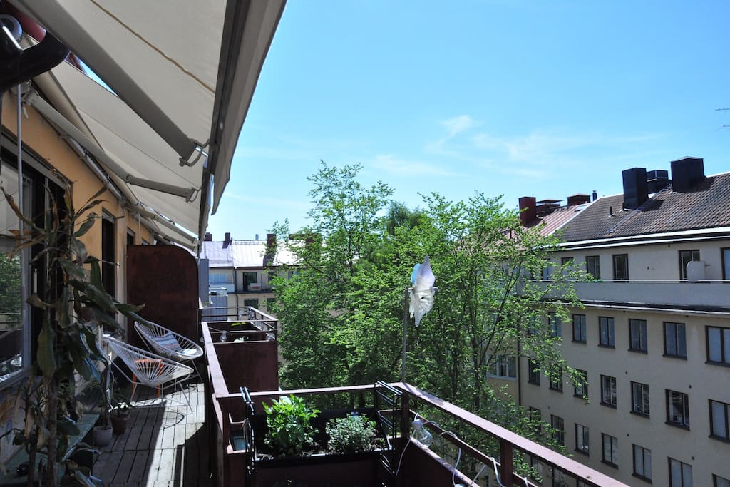 Large 16m2 terrace with sun all day.