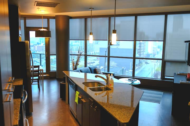 DOWNTOWN Luxury High-Rise 2 Br 2 Br Suite