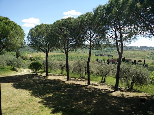 Villa Wanda CountryHouse in Tuscany - Certaldo - Villa