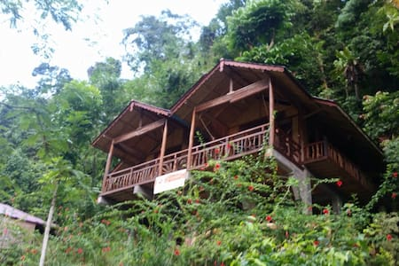 Kupu-Kupu Garden Guest House - Orangutan Room