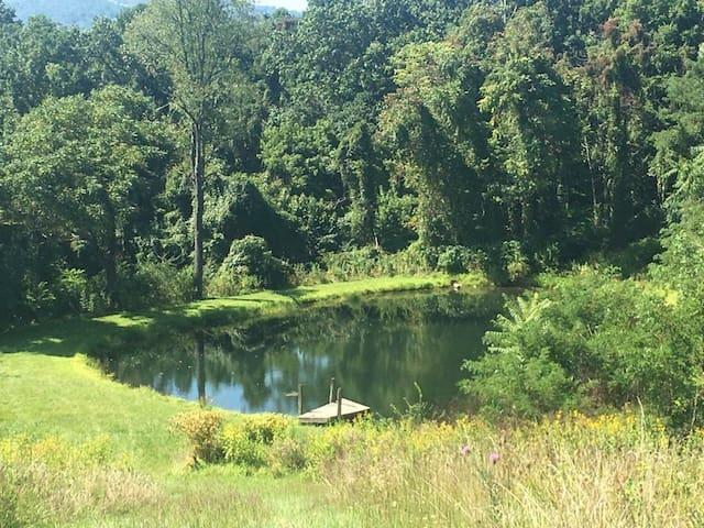 Linden Valley View