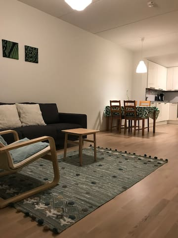 Tikkurila station 10min to airport(for 1-2 people)