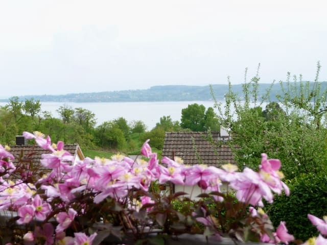 Holiday apartment Geigenberg in a quiet southern location close to the forest with lake view at the edge of Sipplingen