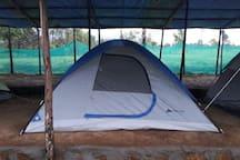 tent blue