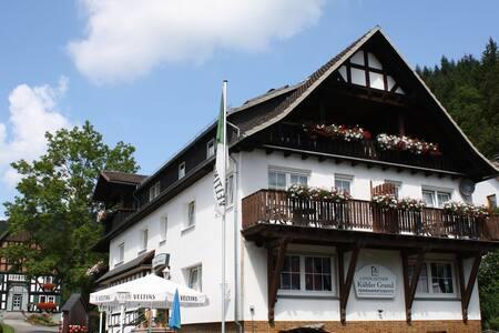 Boutique-Wohnung mit Balkon in Titmaringhausen