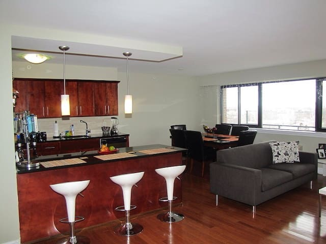 Luxury 1BR Penthouse Condo - East Orange - Apartment
