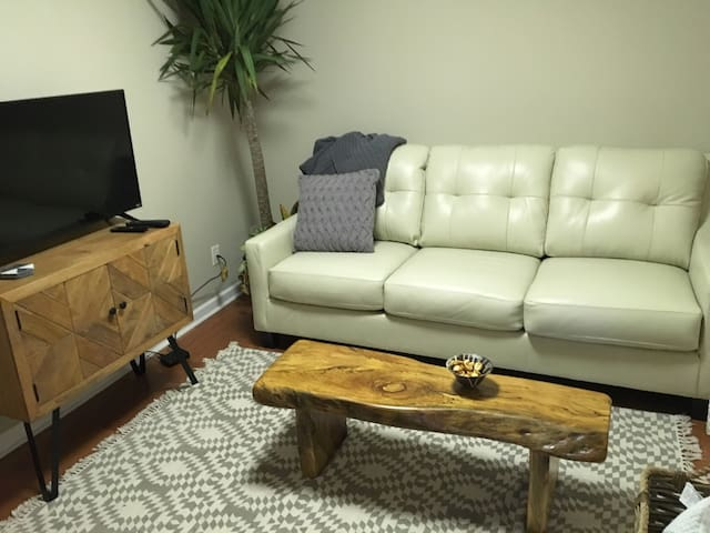 The living room has everything you need. Cable TV, wireless internet, sleeper sofa, and more.