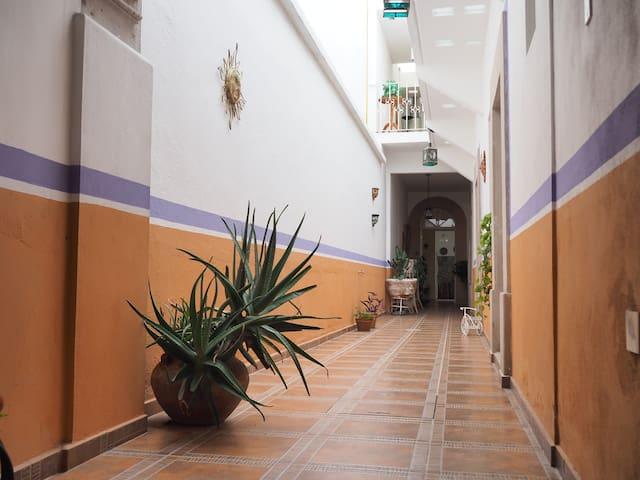 Casa Centro histórico  (Malva)