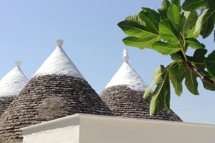 Tropical Trulli