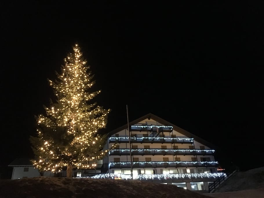 The building at Christmas