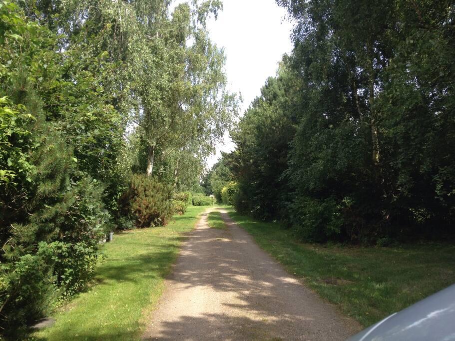 Vejen ned til huset