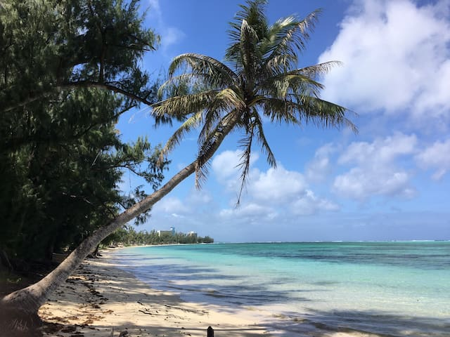 凤凰花园Oleai Beach Villa with kayak-E2 - Oleia - Villa