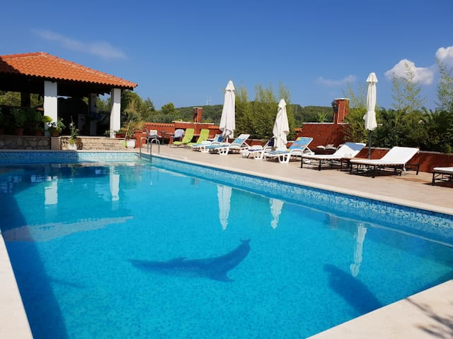 Room with a swimming pool in Jelsa-Hvar