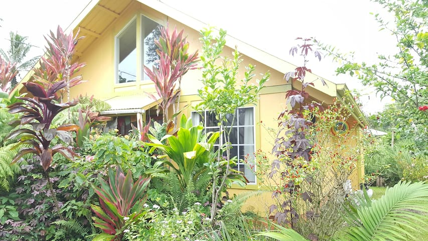 Big Island cozy little home for 1 or 2 couples - Pāhoa - Rumah
