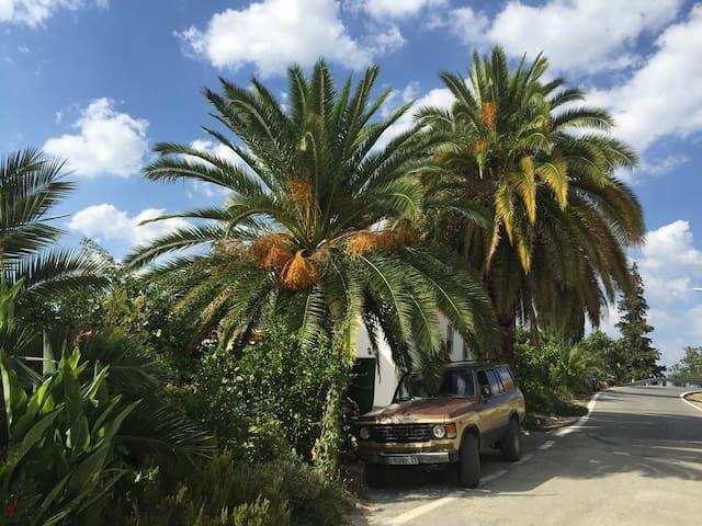 Casa Rural entre olivares con piscina y barbacoa