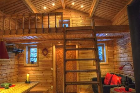 Holiday home in lapland at wild river
